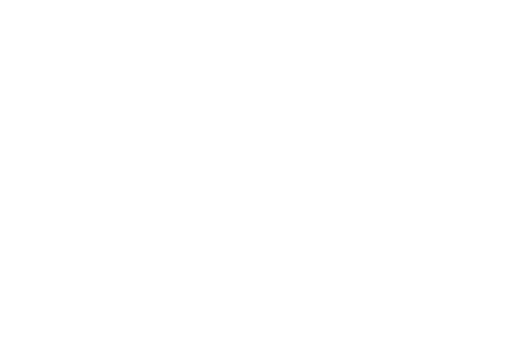 Siirtolaisuusinstituutti logo